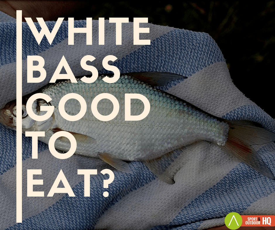 White Bass Good To Eat?